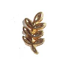 Pins acacia 7mm